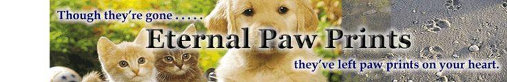 Pet Loss Poems