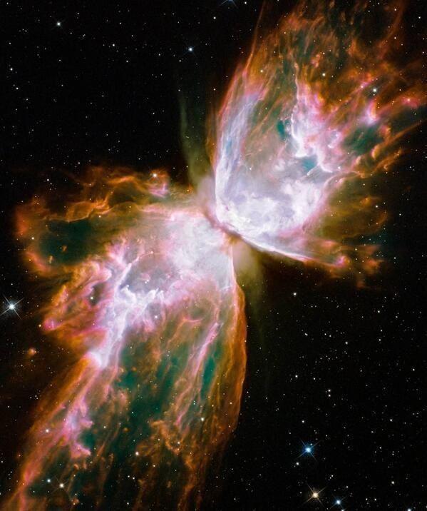 Constelación Mariposa