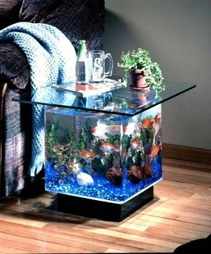 Aqua End Table 15 Gallon Aquarium - contemporary - fish supplies - portland - Pro Home Stores