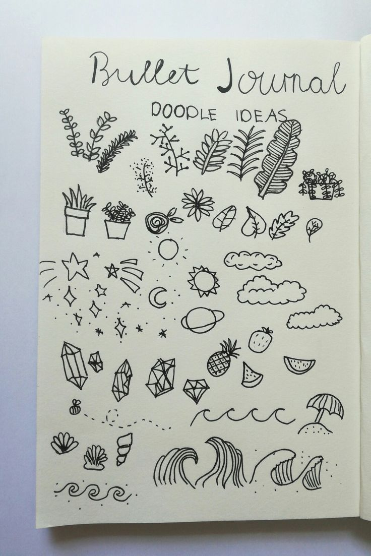 Plants Aesthetic Drawing