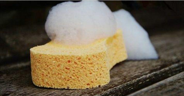 Dit schoonmaakmiddel werkt het beste om je ramen mee te wassen! Je koopt het voor maar 49 cent bij de Action! - Zelfmaak ideetjes