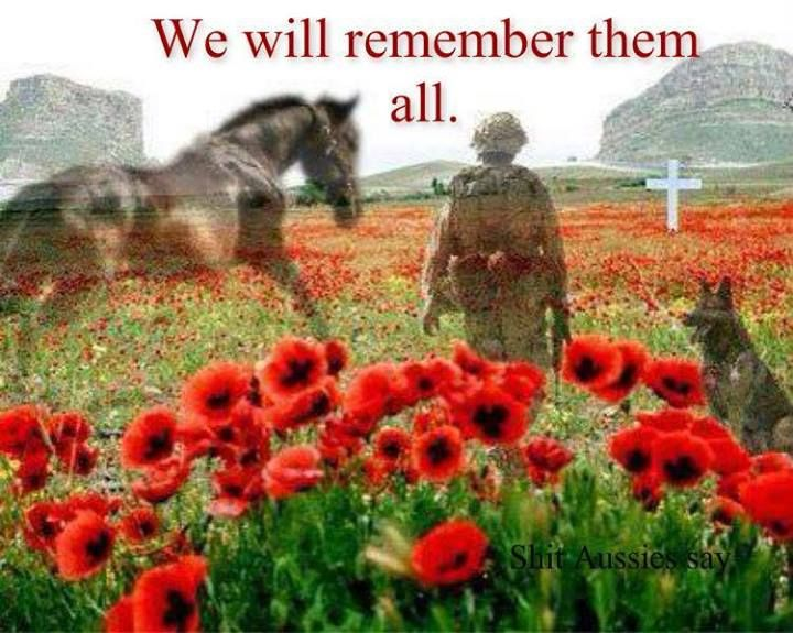 November 1 2014 marking 100 years since troops left our Australian shores for WW1.