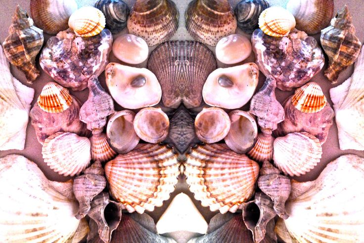 Shell Mask (5) by Jackskeleton1987.deviantart.com on @DeviantArt