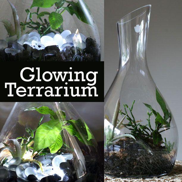 How To Make A Terrarium Night Light G Terrariums