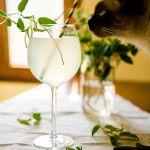 Limonadă+cu+flori+de+caprifoi