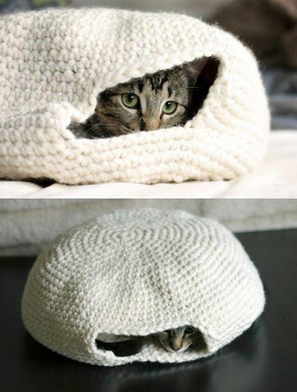 Verwöhnen Sie Ihre Hauskatze mit einem kuschelweichen Katzen-Bett – Pachelle Flesch