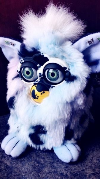 Meet The Furby Collectors Of Tumblr Vox