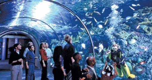 Aquarium of the...