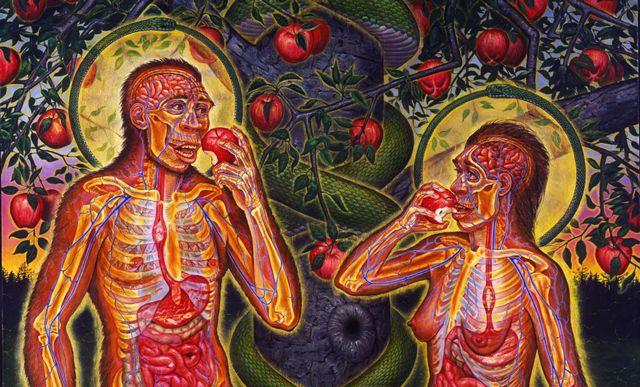 Yediğimiz besinlerin de bir titreşimsel enerji frekansı olduğunu ve bundan dolayı vücudun genel enerji frekans titreşim ahengini bozabildiğini biliyor muydunuz? Frekans dört bir yanım…