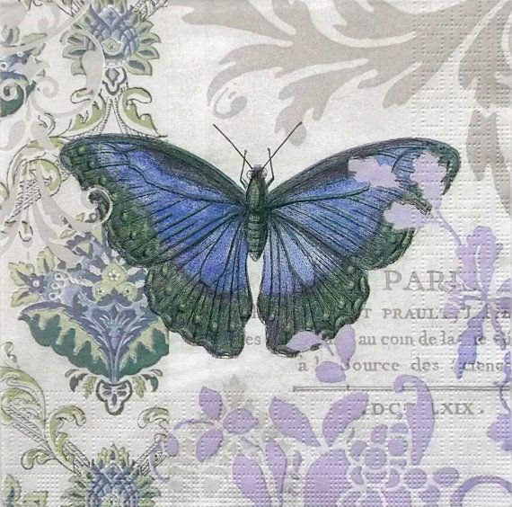 mariposa singles Mariposa traicionera (treacherous butterfly) is the third radio single and seventh track from maná's sixth studio album, revolución de amor (2002) on april 5, 2003, the song debuted at no 39 on the us billboard hot latin tracks.