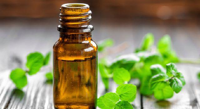 Découvrez les huiles essentielles qui vous aideront à supporter les excès des fêtes : nausées, digestion difficile, spasmes intestinaux, ballonnements.