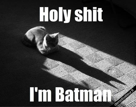 image drole - Batman