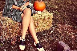Fall time  & pumpkins