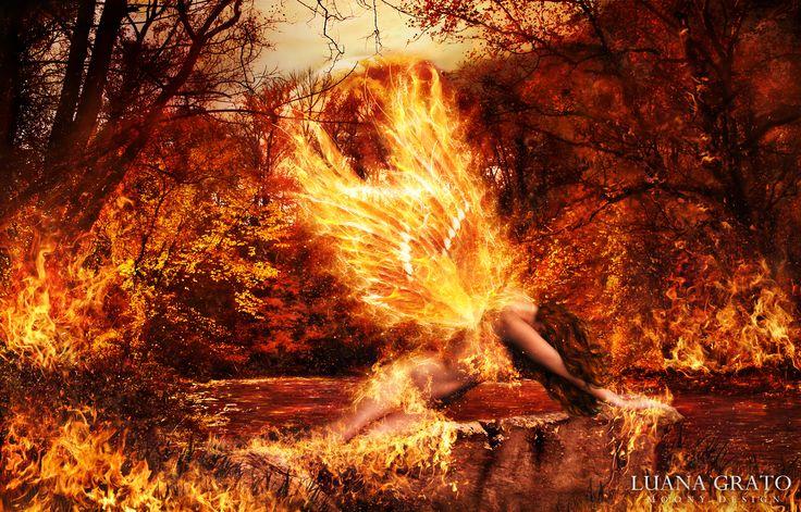 """Post fata resurgo"" Dimensioni: 100 x 70 cm Tecnica: fotomanipolazione digitale  #moonydesign #luanagrato #digitalart #phtomanipulation #photoshop #phoenix #fire #forest #planet #postfataresurgo #firewings"