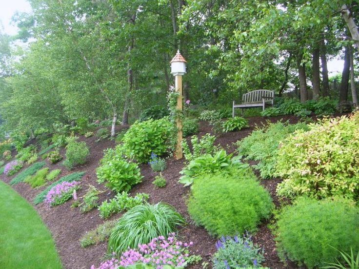 Slope landscaping landscaping pinterest rain the o for Sloping garden design ideas
