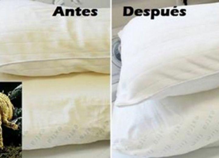 M s de 25 ideas incre bles sobre almohadas de animales en - Como lavar almohadas ...