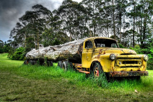 Old Yellow Truck | Flickr - Photo Sharing!