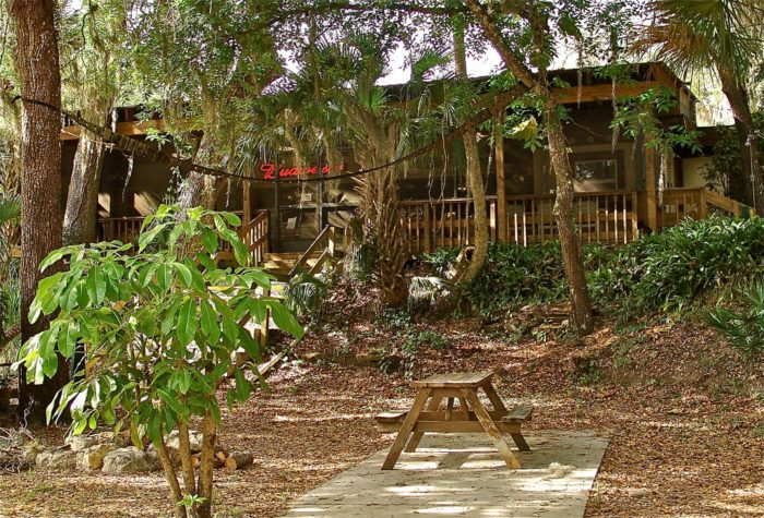 """#6 Linger Lodge Restaurant & Campground is a strange and wonderful Old Florida experience. The founder and amateur taxidermist, Frank Gamsky, covered the walls with wildlife native to Florida. The food is just as wild, with alligator bites and frog legs for those adventurous eaters. Al Roker, on the Food Network, once named it """"One of the Top Five Weirdest Restaurants in the Country"""""""