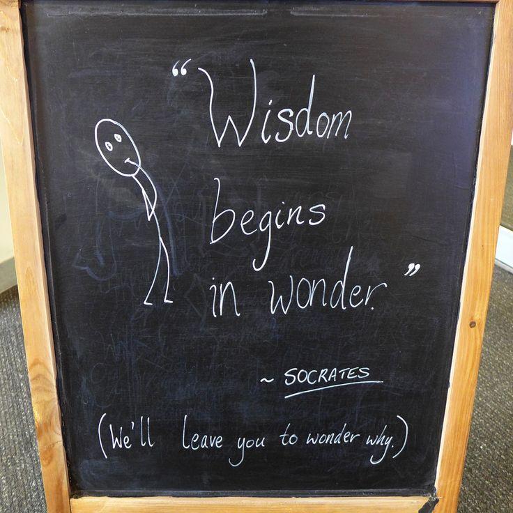 """Wisdom begins in wonder"" ~ Socrates.  (We'll leave you to wonder why.)"