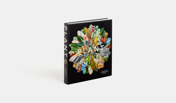 Plant: Exploring the Botanical World | General Non-fiction | Phaidon Store