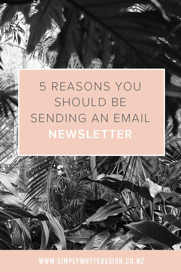 If you are not sending an email newsletter out you could be missing out on connecting with really important people.https://www.simplywhytedesign.co.nz/news/5-reasons-you-should-be-sending-an-email-newsletter