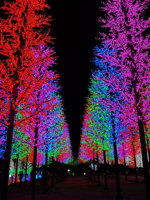✯ City of Digital Lights - Shah Alam, Malaysia
