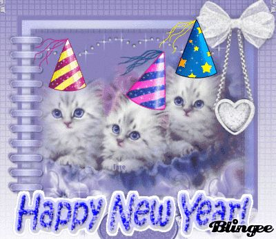 happy new year cats