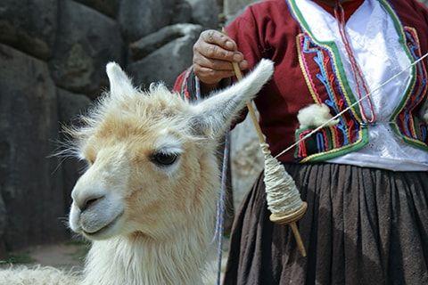 Wonders of Peru | Packages to South America