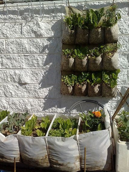 Repurpose shoe bags and fabric hanging organizers as for Hanging vegetable garden ideas