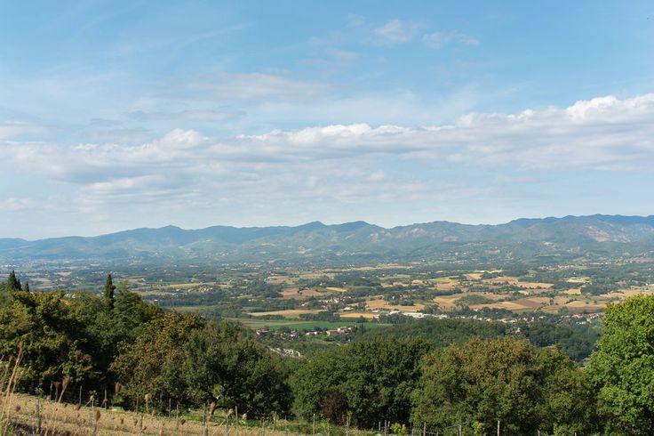 Dintorni (estate) (1-5 km)