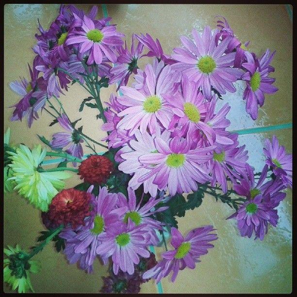 .@Incognito7dcv CarelessWhisper | Autumn flowers 2