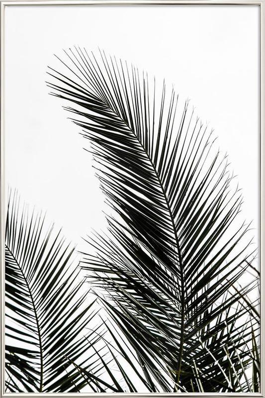Palm Leaves 1 en Affiche sous cadre en aluminium   JUNIQE