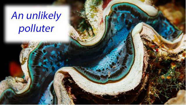 Baltic Sea clams and worms release as much methane as 20,000 dairy cows.