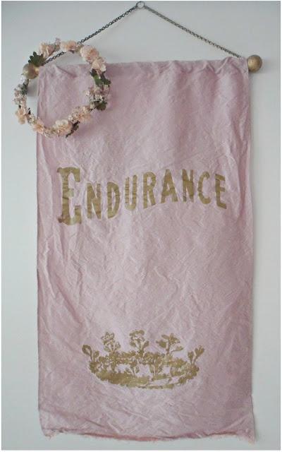 Beautiful Rachel Ashwell Endurance banner