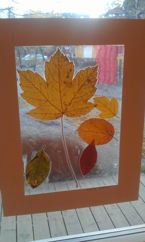 Laminerte høstblader