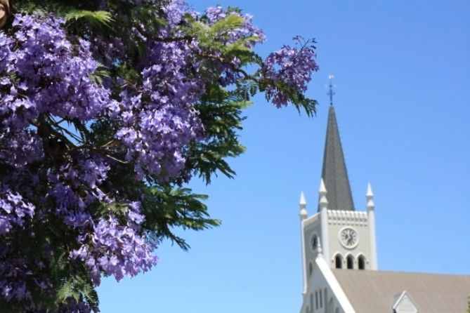 Jacaranda Baum und Kirche in Barrydale in Südafrika