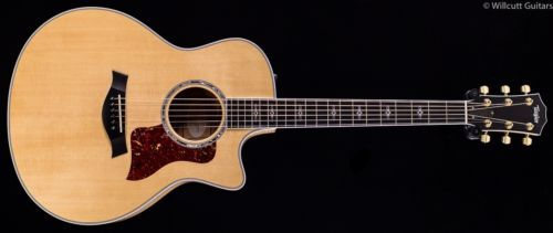 12 String Acoustic Electric Guitar