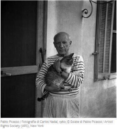 Artisti famosi e i loro gatti - Paplo Picasso.