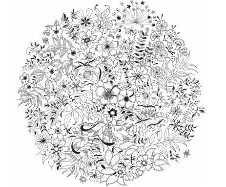Kétévvel ezelőtt Johanna Basford skót illusztrátor kiadta Secret Garden, azaz Titkos Kert című, kreatív és gyönyörű fekete-fehér rajzokkal teli színezőkönyvét, amellyel egy csapásra új hobbit teremtett világszerte a fiatal nők között. Nem hiába: a rajzok életre hívásába…