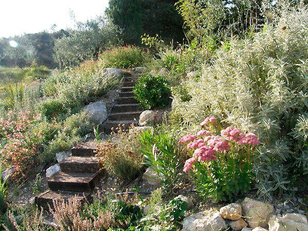 Plus de 1000 id es propos de jardin sur pinterest jardins google et agaves for Jardin rocaille mediterraneen