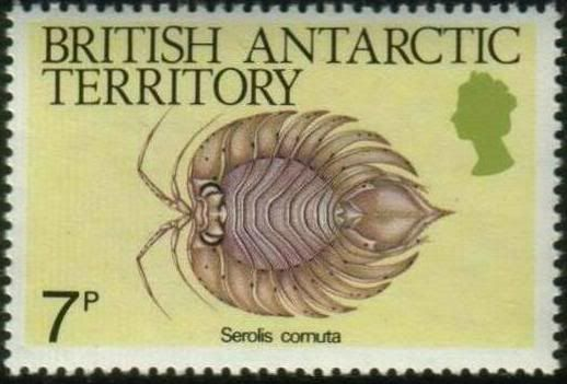 208 Best Stamps British Antarctic Territory Images On