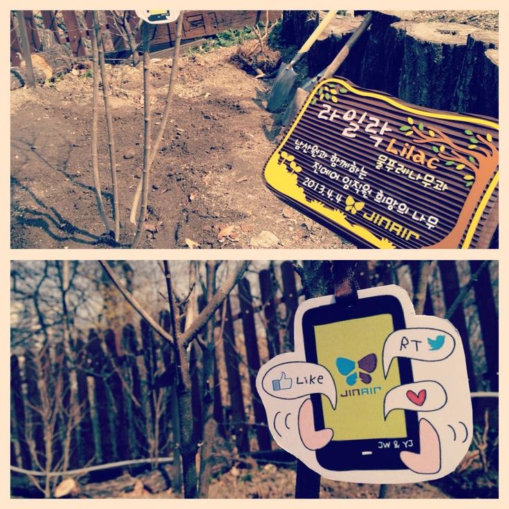 따사로운 봄날씨 그리고 남산원과 함께 하는 진에어 임직원 '희망의 나무' 심기행사 (APR 4, 2013) #JinAir #jinair #SAVetHEAiR #식목일