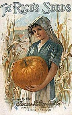 vintage seed packet: pumpkin