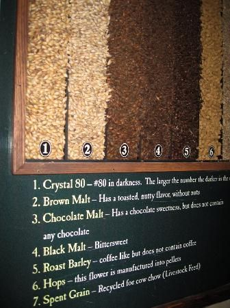 Cool display for brewery - Malts, and Hops Display explaining brewery process.