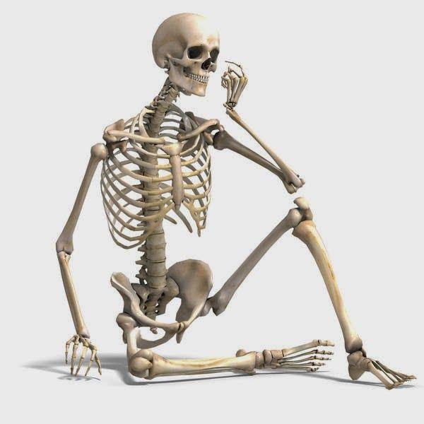 Inilah Tips Cara Alami Menjaga Kesehatan Tulang Anda  Sudah banyak kasus yang menunjukan bahwa semakin tua umur seseorang semakin tua pula usia tulang yang ada pada orang tersebut. Dalam kasus ini sering kali dalam dunia kedokteran disebut dengan sebutan penyakit osteoporosis atau kondisi rapuhnya tulang kita. Tidak hanya menjangkiti para kaum lansia bahkan akhir-akhir ini penyakit osteoporosis menjangkiti para kaum dewasa. Biasanya penyebab umum dari terjadinya osteoporosis dini adalah…