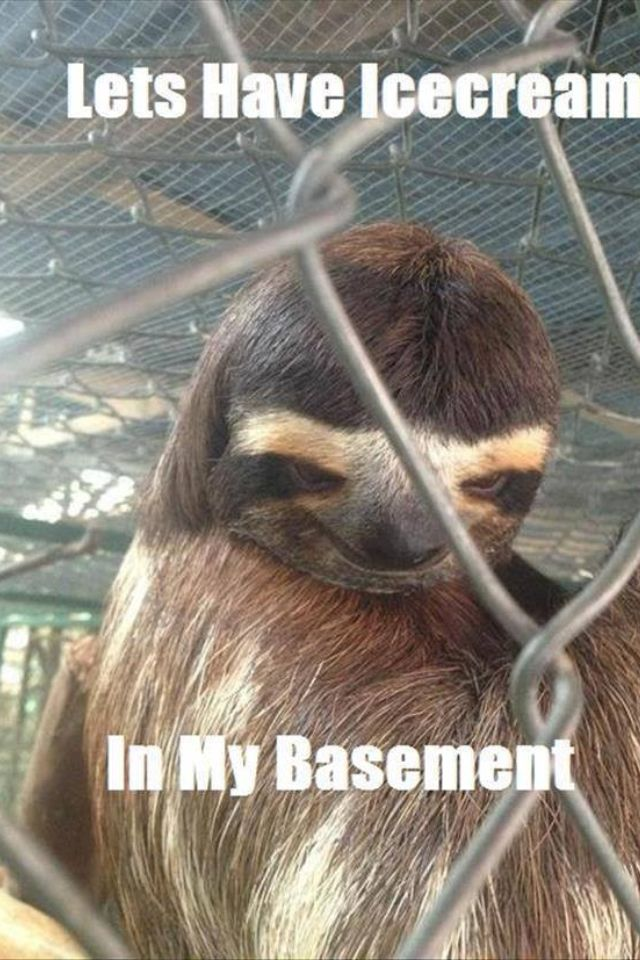 Lets have Icecream .... In my basement. creepy sloth ;-P
