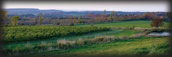 Coffin Ridge Boutique Winery - Meaford Ontario