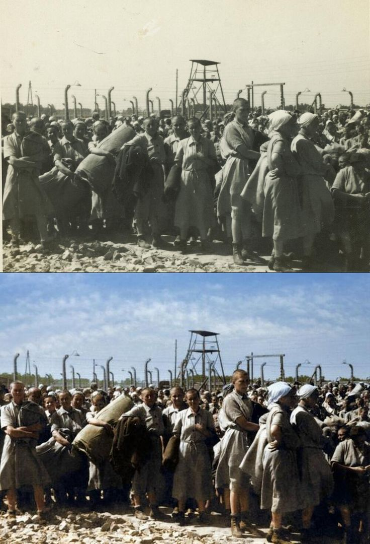 Auschwitz II-Birkenau 1944. Hungarian Jewish women selected as able bodied at the BIIc sector of the camp. B&W original and colour interpretation by https://twitter.com/ColoredHistory