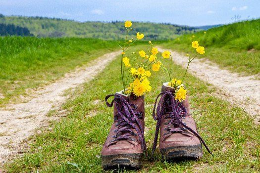 #Rondreis #Oostenrijk #Duitsland #Beierse #Woud #Alpen #wandelen #wandeltocht