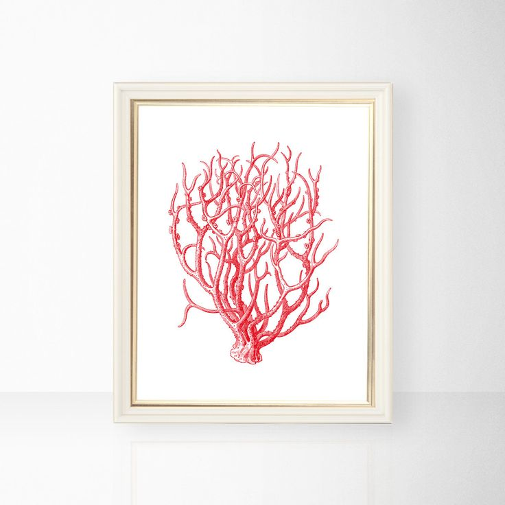 Red Coral Beach Cottage Art Print Ocean Seaside Nautical Poster Instant Download Printable A4 A3 8×10 & 11x14 Wall Decor HQ300dpi by ZikkiArt on Etsy